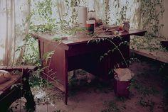 Gabriel Orozco. My Office II (Mi Oficina II). 1992 - Guggenheim Museum. Collection Online