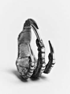 Dragon claw ring...i loved it!!!!