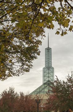 Fall leaves and OCC tower.  Photo by Jeremy Jeziorski.