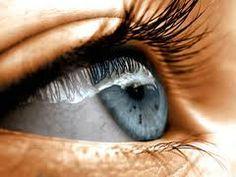 eyes photos - Google Search