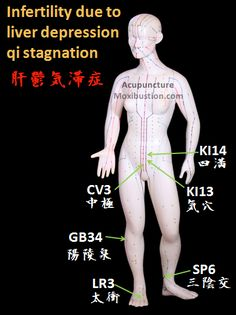 Fertility Enhancing Points used in Traditional Chinese Medicine - liver depression qi stagnation acupoints. http://www.acupuncturemoxibustion.com/acupuncture-points/fertility-acupuncture-points/chinese-points/