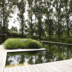 Zwemvijver in L-vorm in landelijke tuin met cederhouten poolhouse   De Mooiste Zwembaden