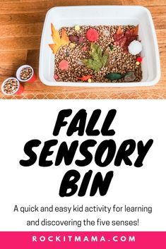 Fall Sensory Bin - A Quick and Easy Kid Activity   Rock It Mama   Make this fall sensory bin just in time for the season! This cheap and fun activity is great for learning and discovering the senses