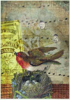 Ricepaper/ Decoupage paper, Scrapbooking Sheets /Craft Paper Bird Nest 110   eBay