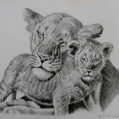 Mothers Love Series 1 Amazing Drawings, Mothers Love, Cattle, Strong, Animals, Life, Color, Elegant, Art