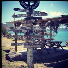 St kitts ~ ShipWreck Bar in Friar's Bay ~ favorite place..... drunk monkeys!!!