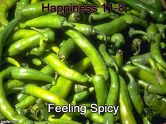 Happiness 11-8:  feeling spicy;  whispers of intention;  blowing away the fog.  http://winsloweliot.com/category/happinesses/