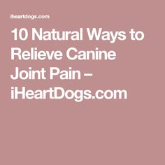 10 Natural Ways to Relieve Canine Joint Pain – iHeartDogs.com