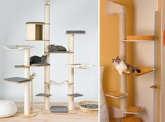 Amazing Inspiration from Germany: Elegant & Simple Cat Climbing Towers & Scratching Posts by Profeline | moderncat :: cat products, cat toys, cat furniture, and more…all with modern style