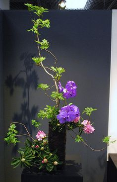 These photos were taken at the 62nd Ikebana Exhibition in Kyoto.
