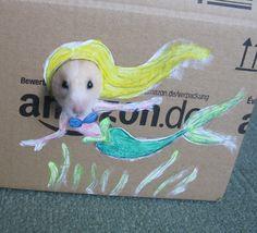 Hamster hipster
