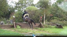 Sierra jumping cross country. https://www.youtube.com/watch?v=cJsRt_ad7oA #loveirishhorses #horseforsale