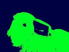 GREEN LIGHT '15 [Limited Edition], Gonçalo Castelo Branco
