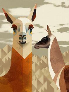 East End Prints - Llama by Dieter Braun, Alpacas, Illustration Vector, Vector Art, Art Péruvien, Llama Arts, Llama Llama, Peruvian Art, Art Graphique, Art Abstrait
