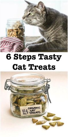 Want to know what's actually going into your furry friend's snacks? Try whipping up a batch of these easy, homemade cat treats. Healthy Cat Food, Best Cat Food, Dry Cat Food, Food For Cats, Pet Food, Cat Recipes, Dog Food Recipes, Easy Cat Food Recipe, Recipe Treats