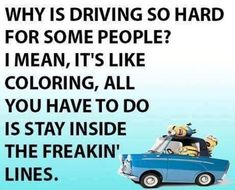 Why is driving so hard for some people? I mean, it's like coloring, all you have to do is stay inside the freakin lines.