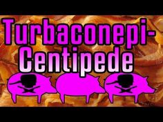 Turbaconepicentipede - Epic Meal Time .... bacon n liquor (i dont know what to say .... enjoy?)   Thankgiving 2012
