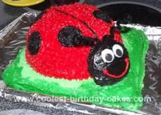 Homemade  Ladybug Cake: I made this ladybug cake for a dear friend of mine who loves ladybugs. I made the body out of a 2 qt. Pyrex bowl. The grass stand is made out of an 8 inch