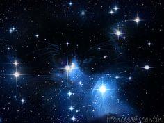 micio tra le stelle
