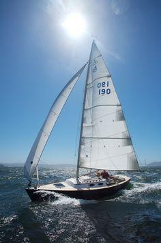 #barco #vela #vele