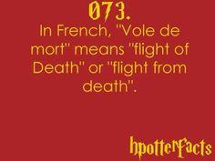 Harry Potter Fact 073