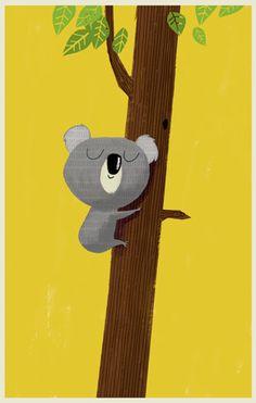 koala in a gum tree - jim field