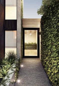 3D Visualisation by Mazer Visual for Wellington Road apartments in Melbourne/ Archello.