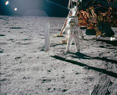 Michael Collins, Apollo 11, Ufo, Nasa, Archive, Horses, Animals, Photos, Moon Landing