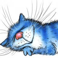 Rina Zeniuk 🐈 - Tiermalerei - Katzen World Funny Cats And Dogs, Cats And Kittens, Funny Puppies, Splat Le Chat, Heaven Art, Happy Paintings, Animal Sketches, Blue Cats, Cat Drawing