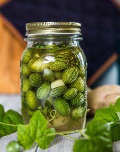 Pickels, Edible Garden, Preserving Food, Preserves, Cucumber, Healthy Lifestyle, Good Food, Vegetarian, Homemade