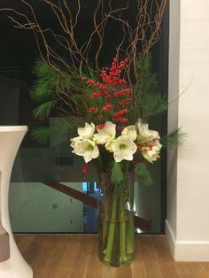 Amaryllis blanc, ilex, pin