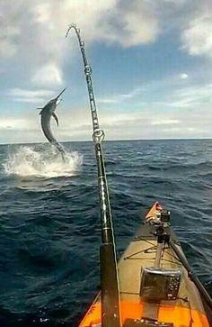 Gadgetflye.com- because fishing