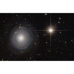 A Secluded Starburst Galaxy: This image was taken by the Hubble Space Telescope and shows a starburst galaxy that lies some 300 million light-years away from us, and is currently experiencing an extraordinarily high rate of star formation - a starburst.  Normal galaxies produce only a couple of new stars per year, but starburst galaxies can produce a hundred times more than that. As seen face-on, the galaxy's spiral arms and the bright star-forming regions within them are clearly visible and…