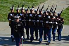 marine honor guard - Yahoo Image Search Results
