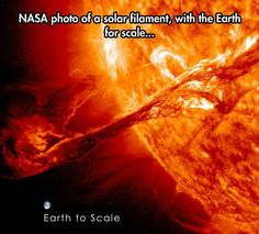 NASA phto of a solar filament. Earth for scale. Astronomy Facts, Space And Astronomy, Astronomy Stars, Astronomy Pictures, Cool Science Facts, Wtf Fun Facts, Cosmos, The More You Know, Good To Know