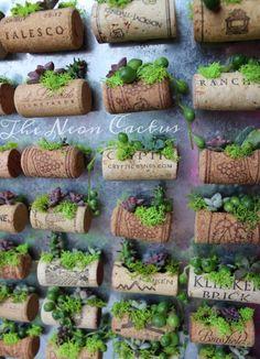 Cactus & Succulent Cork Magnets Succulent Magnets Home Wine Cork Projects, Wine Cork Crafts, House Plants Decor, Plant Decor, Hanging Plants, Indoor Plants, Hanging Gardens, Indoor Gardening, Air Plants