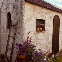 自宅の庭自分でデザインして建てた小屋✨一目惚れして購入した小窓はどちらもアンティークショップのもの♡フランス・イギリスの田舎が好き。行ったことはないけど、フランスならジェルブロワっていう村とか、エズってところが好き。イギリスはコッツウォルズ地方の村が好き。いつか行ってみたいなぁ…。#フランス片田舎#イギリス片田舎#フランスエズ#ジェルブロワ#イギリスコッツウォルズ#庭デザイン#古道具#アンティーク#ステンドグラス#雑貨#多肉植物#紫陽花ドライフラワー#アメジストセイジ#ユーカリ#自転車小屋