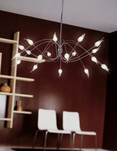 Zashi chandelier