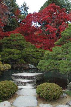 #Japan #garden https://twitter.com/Makaveli_Life