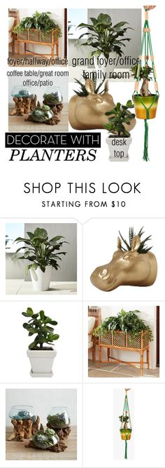 """""""sample 8"""" by daincyng ❤ liked on Polyvore featuring interior, interiors, interior design, home, home decor, interior decorating, Rice, Ballard Designs, West Elm and plants"""