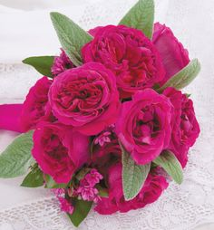 Kate #roses #bouquets #brides #weddings #rosaprima