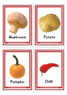 Vegetables Flashcards for Babies Toddlers Preschoolers