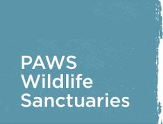help support these animals located at #PAWS Wildlife Sanctuaries by adopting them or gifting a donation!
