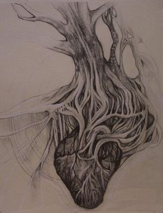 Roots of a tree connecting to an anatomical heart, interesting tattoo idea.