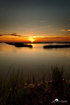 Sunset on Galveston Bay, Galveston Island State Park in Texas. Sand 'N Sea Properties LLC, Galveston, TX Great Places, Beautiful Places, Places To Visit, Beautiful World, Galveston Texas, Galveston Island, Texas Bluebonnets, Texas Travel, Travel Aesthetic