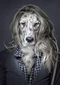 Mens + hond = ???