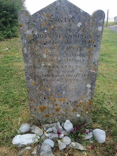 Mary Anning's grave, Lyme Regis Lyme Regis, Primary Science, Extinct Animals, Hidden Treasures, Fossils, Geology, Cornwall, Minerals, Cabinet