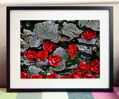 A unique view of the Tower of London Poppies. Home decor ideas  https://www.etsy.com/uk/listing/474056574/tower-of-london-poppies-12-x-16-digital