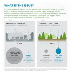 What is Green Stormwater Infrastructure? But as we create these concrete jungles, we create problems for our water supply. Sponge City, What Is Green, Drainage Solutions, Environmental Engineering, Erosion Control, Water Pollution, Healthy Water, Water Management, Rain Garden