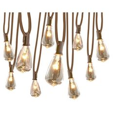allen   roth 12-ft Clear Plug-In Edison String Lights